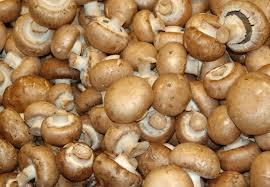 Buy White mushrooms, dried