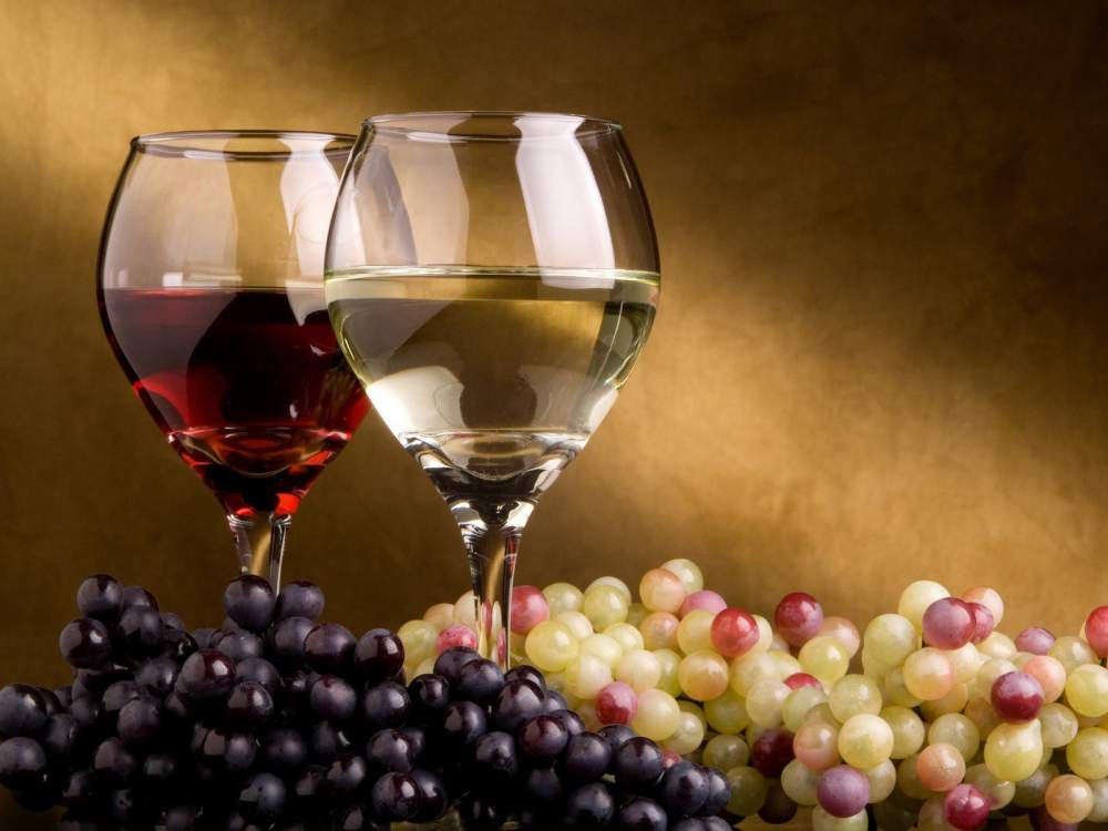Buy Production of wine