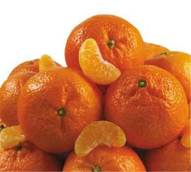 Buy Мандариновое пюре и концентрированный мандариновый сок