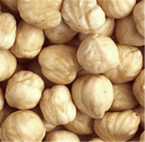Buy Фундук ядра жареных орехов , сорт: 9-11, 11-13, 13-15, 15+ მმ Nuts Roasted Kernels 9-11, 11-13, 13-15, 15+ მმ