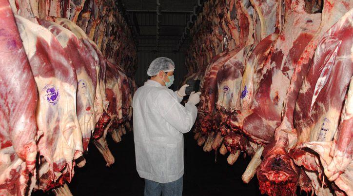 Buy Грузинский халяльный экспорт мяса и овец