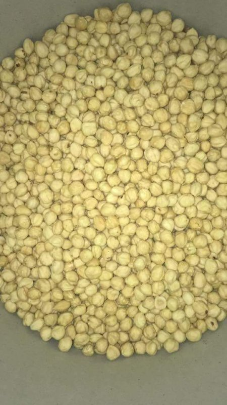 Buy Roasted and Blanched Hazelnut Kernels