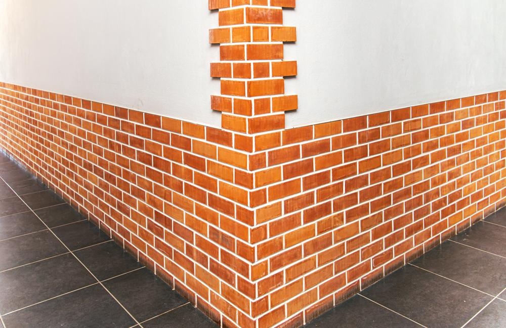 Buy Ceramic wall tiles 230х68х11 mm