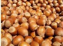 Georgian nut