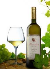 Dry white wine Vazisubani