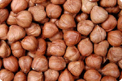 All Types of Georgian Hazelnut