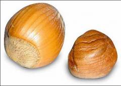 Hazelnut Product. Фундук в скорлупе.