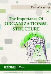 The Importance of Organizational Structure