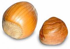 Oval nuts. Круглые орехи - фундук