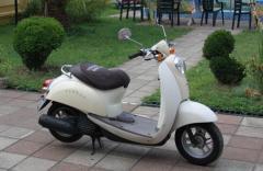 Honda Crea Scoopy