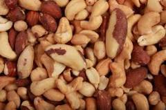 Орехи Грузии. Hazelnut