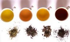 Various type of Tea