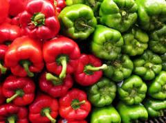 Fresh vegetable salads