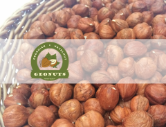 Hazelnut price, fındık Gürcistan , funduk cena