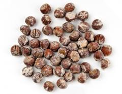 Жареный соленый фундук со скорлупой размере (17-19mm 19-21mm, 21, + мм . Roasted and Salted Inshell Hazelnuts