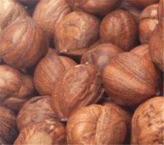 Фундук очищенный (без скорлупы), в естественной внутренней пленке .Raw Hazelnuts Kernels