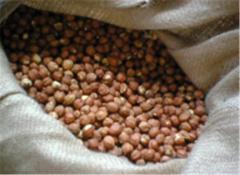 Упаковка - джутовые мешки емкость 50-80 кг для транспортировки фундука