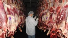 Грузинский халяльный экспорт мяса и овец