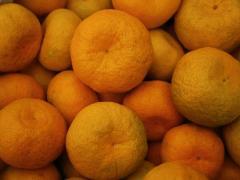 Mandarin Georgian