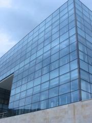 Aluminum  Glass Facade