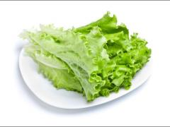 Lettuce Green . Салат зеленый