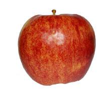 Apple Jonagoredi