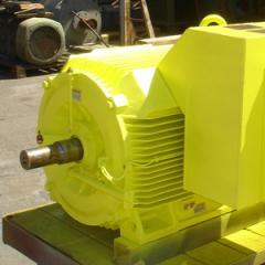 High Voltage Motors