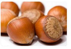 Round Hazelnut Inshell. Фундук в скорлупе калибр
