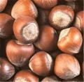 Nuts (Unbroken)
