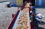 Order Mandarin Recycling service