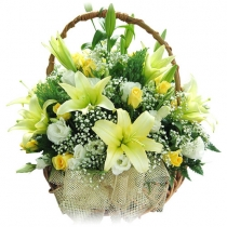 Order Gift flower baskets