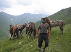 Horse Round -Tsovata