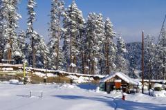 Ski Tours Bakuriani